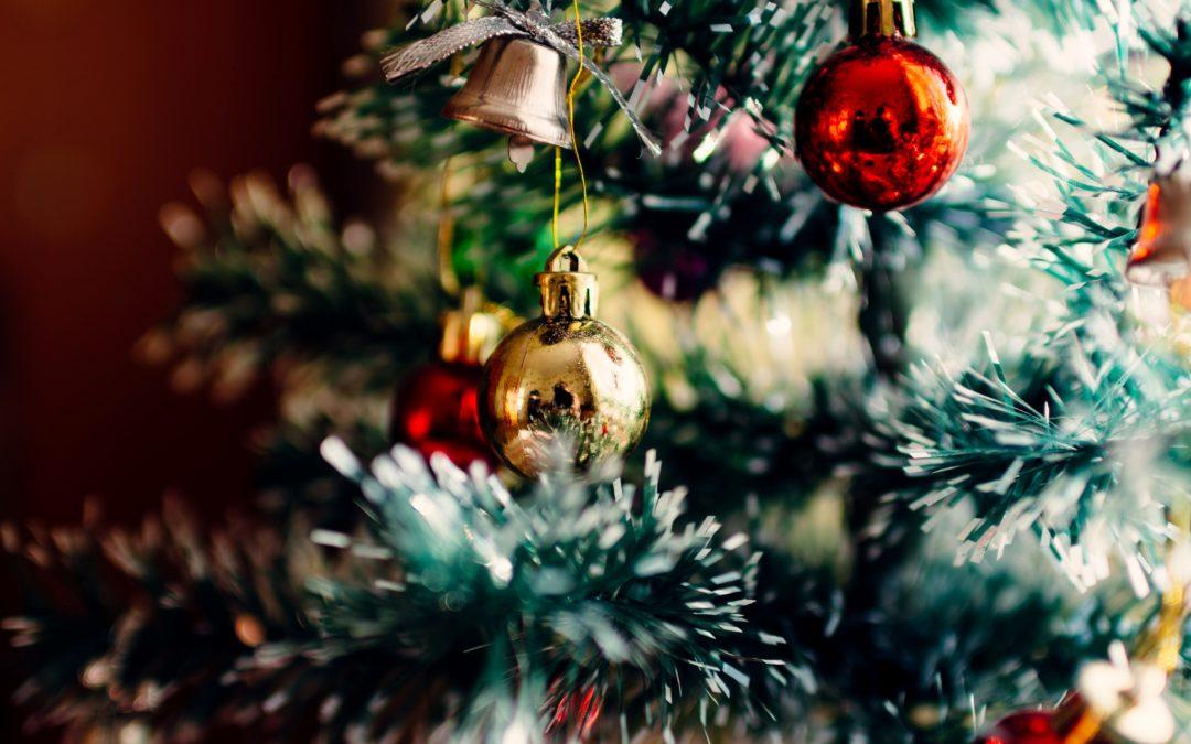 Homily and newsletter – Christmas Break 2020