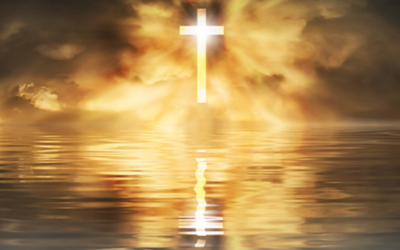 Homily and Newsletter, 16th May 2021